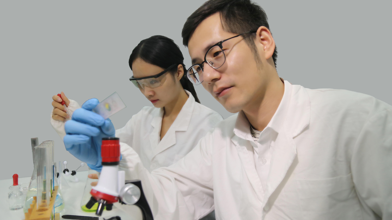 离子淌度质谱 多维代谢物鉴定新技术