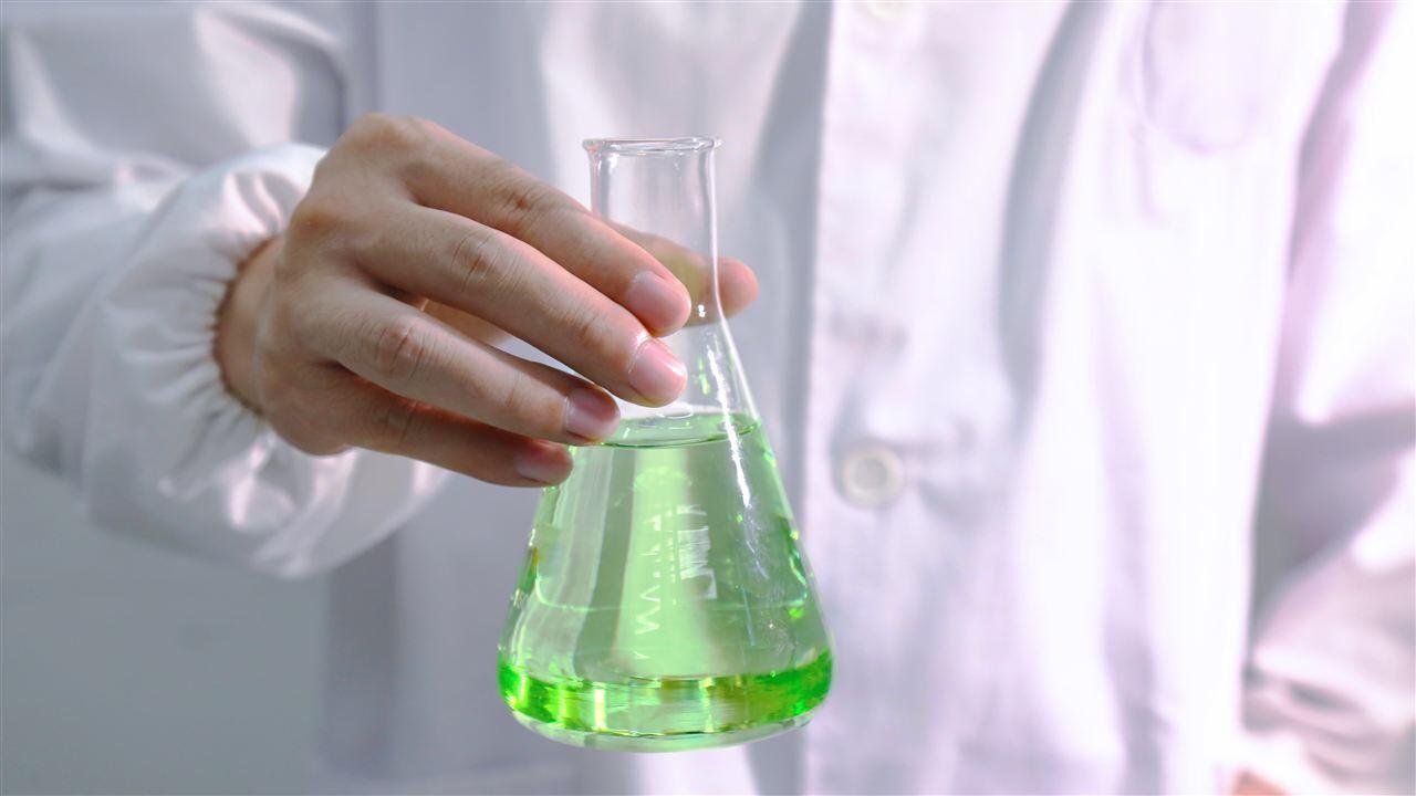 助力茶叶生产与消费 茶多酚含量速测方法出炉